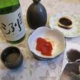 山形小嶋総本店 特別検定酒純米吟醸洌