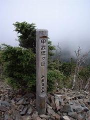 Kobushi05