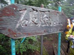 Kobushi16_2